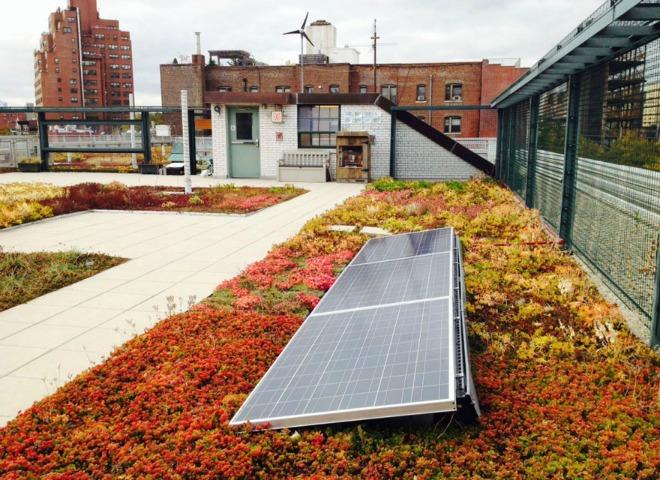 Khu vườn độc đáo nhờ tấm pin năng lượng mặt trời