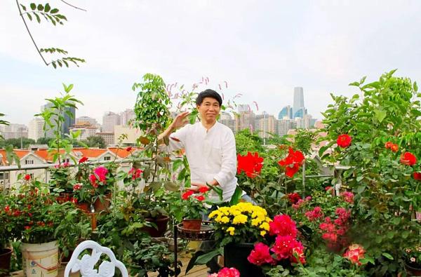 Ngắm khu vườn treo ngập tràn hoa và rau quả sạch trên nóc chung cư của một thầy giáo