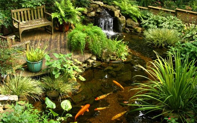 6 ý tưởng thiết kế sân vườn nhỏ xinh lung linh