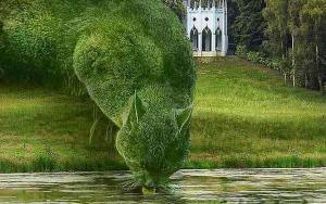 Tròn mắt với những khu vườn sở hữu cây hình con vật giống như thật
